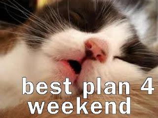 cat meme about weekend plans