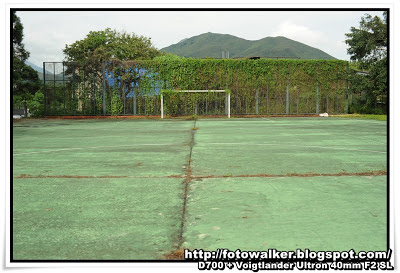 前坪洋公立學校(Ping Yeung School)