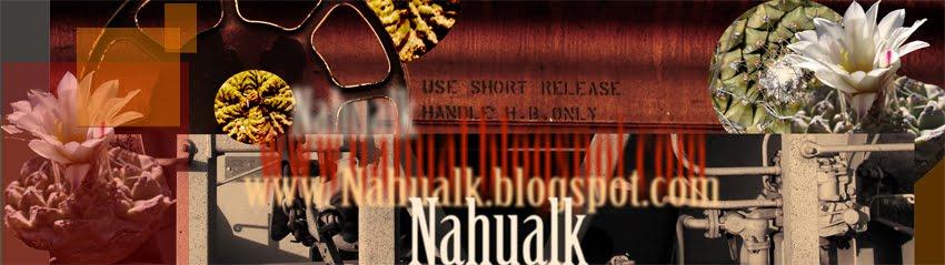NahualK
