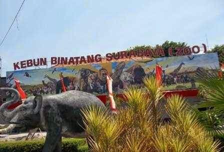 Kebun Binatang surabaya : Tempat wisata surabaya yang cocok buat pendidikan anak-anak