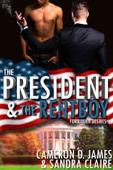 THE PRESIDENT AND THE RENTBOY