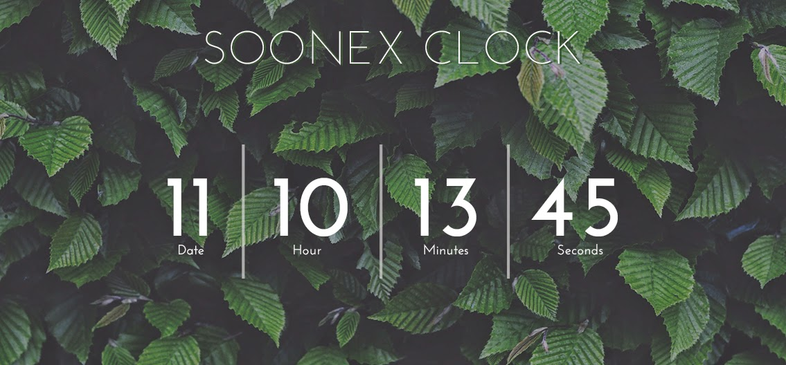 Soonex V.1