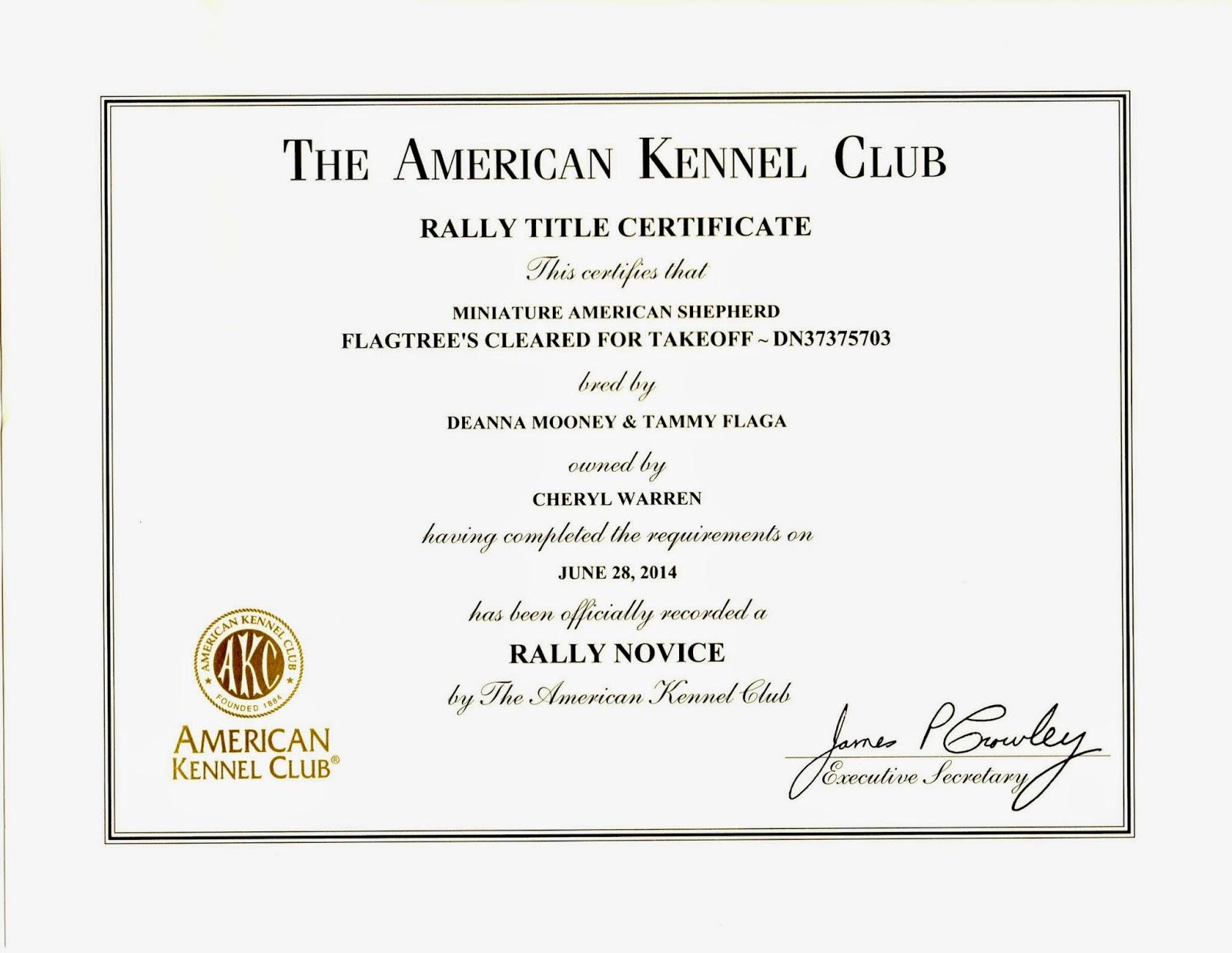 Stately Warren Manor Kirks First Akc Title Certificate