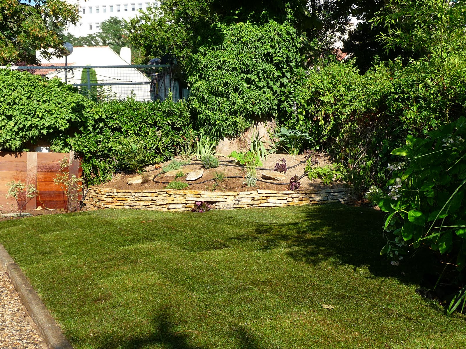 Jardin d 39 idees lionelscaturro paysagiste entretien for Entretien jardin 53
