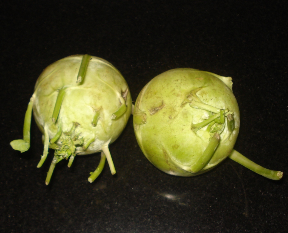 turnip in kannada