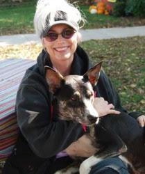 Dogs Day Retreat Newcastle Company
