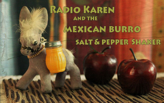 Radio Karen and the Mexican Burro Salt & Pepper Shaker