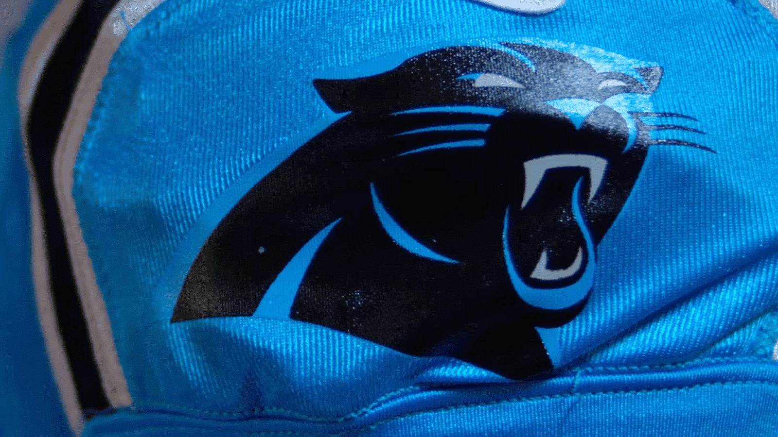 2015_ColorRush_Panthers2.png