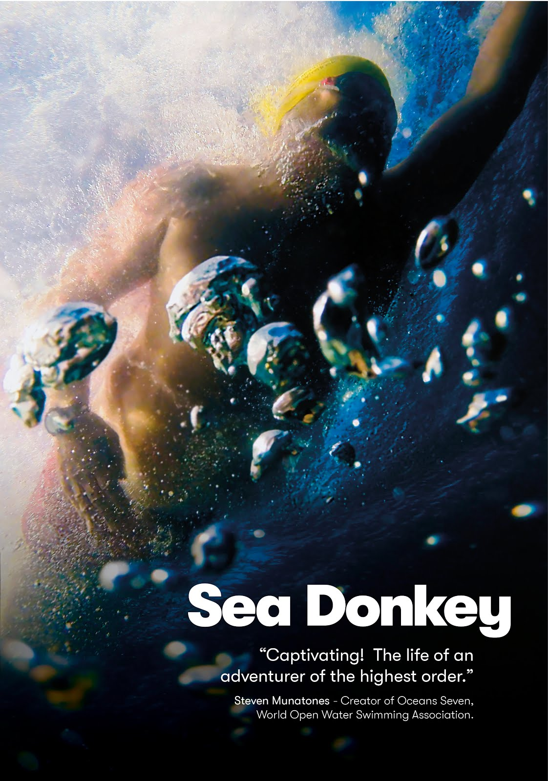 Sea Donkey In The North Channel