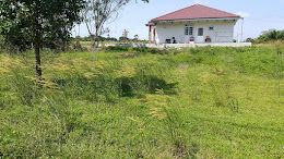 tanah lot banglo corner utk di jual