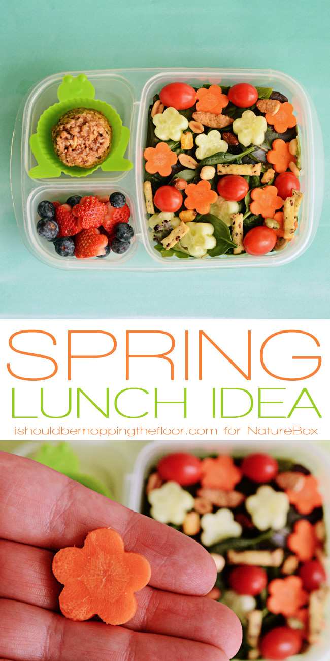 Spring Lunch Box Idea for Kids or Grown Ups