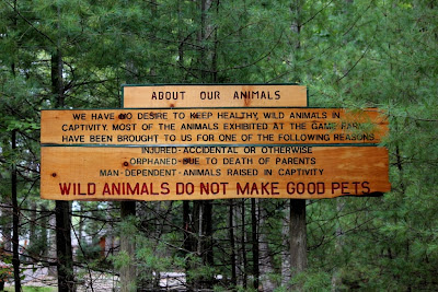 wild animals sign