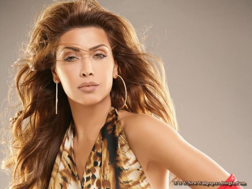 http://1.bp.blogspot.com/-54gjmyY_b3o/T4CKMzaF1VI/AAAAAAAAAXI/kTmbE1aGZ48/s1600/Nawal-Al-Zoghbi-wallpaper.jpg