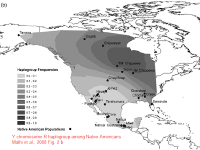 R haplogroup America map