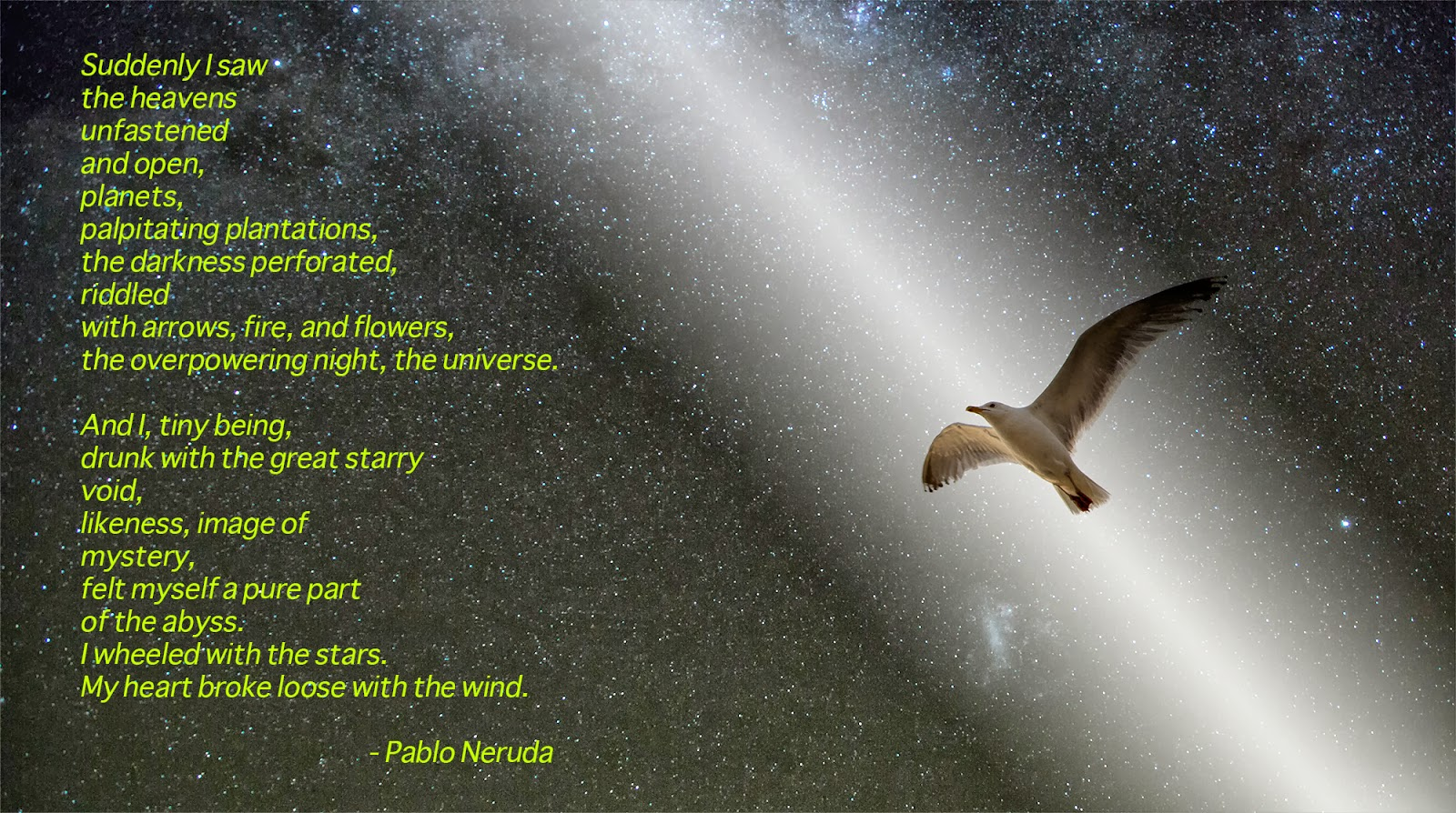 A writer and artist in the moment this date in science pablo this date in science pablo neruda and the beauty of the universe from earth sky izmirmasajfo