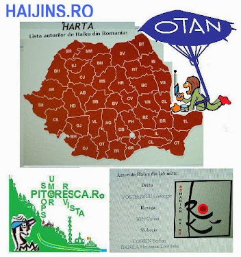 MAP / HARTA HAIJINS.RO *** TO MEET THEM click on the IMAGE , ROKU, HARTA / JUDEȚ / COUNTY ***