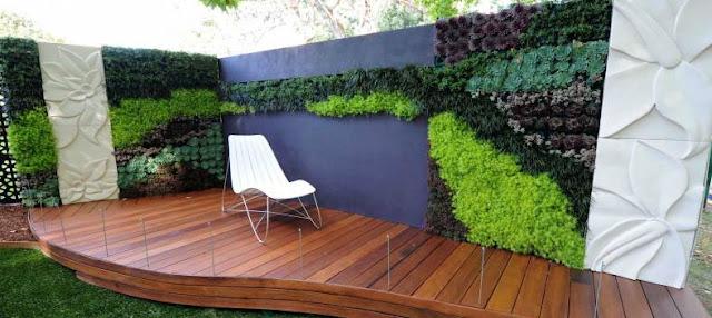 vertical_garden_at backyard