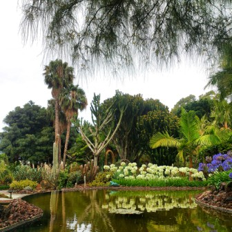 Jardines Marquesa de Arucas, Gran Canaria