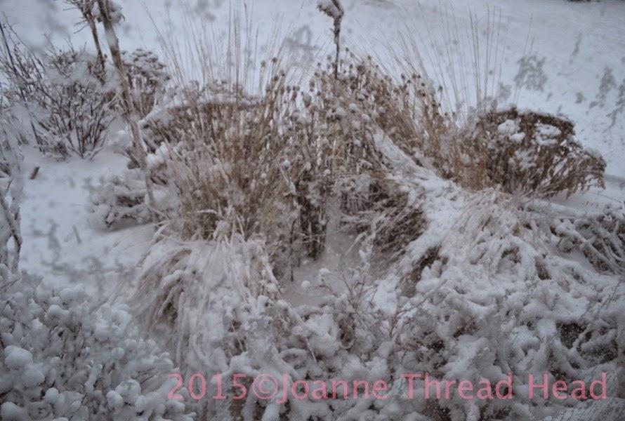 http://1.bp.blogspot.com/-55UXTddIGls/VRSFYsXojXI/AAAAAAAAQ0M/IEfJHbQ5KNw/s1600/DSC_0073.jpg