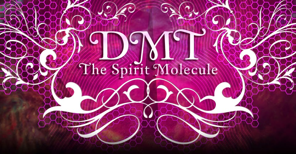 dmt the spirit molecule Trailer for a new documentary film called dmt: the spirit molecule, based on the  book of the same title by dr rick strassman md dmt or.