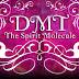 DMT : The Spirit Molecule Documentary Movie (2010)