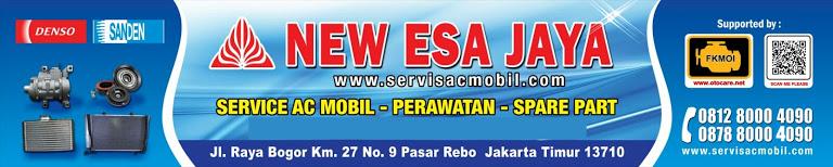NEW ESA