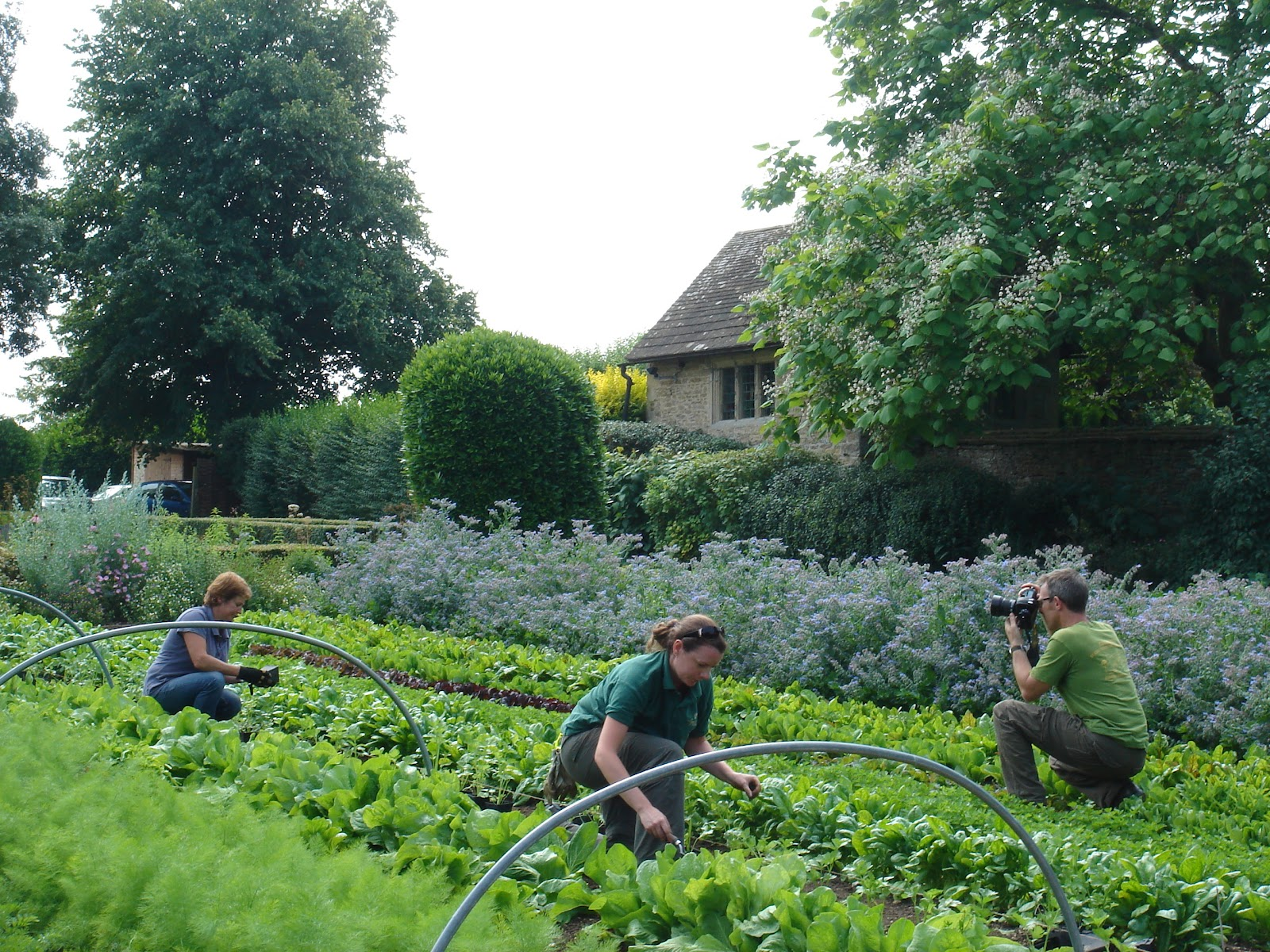 English Kitchen Garden Related Keywords Suggestions For Le Manoir Aux Quatsaisons
