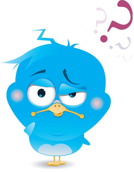 Confused Bird