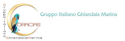 Coracias Gruppo Italiano Ghiandaia Marina