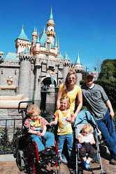Special Needs at Disneyland rocks