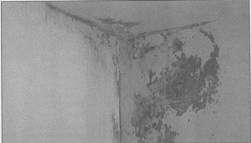 Humedad producida por infiltración, que ha provocado una mancha de aspecto desagradable, y no por condensación.