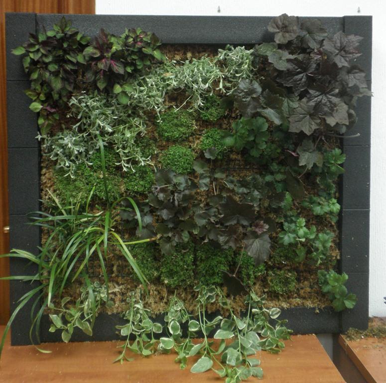 Jardines verticales y cubiertas vegetales abril 2013 for Jardines verticales barcelona