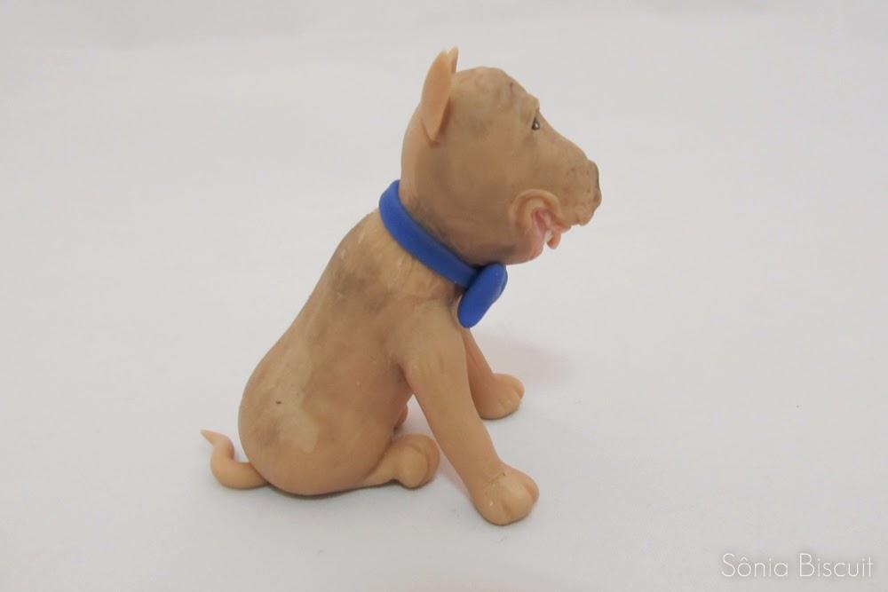 Pitbull Yorkishire Cachorrinhos Biscuit