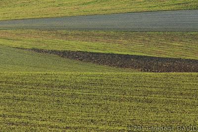 patchwork campagne champ Seine-et-Marne