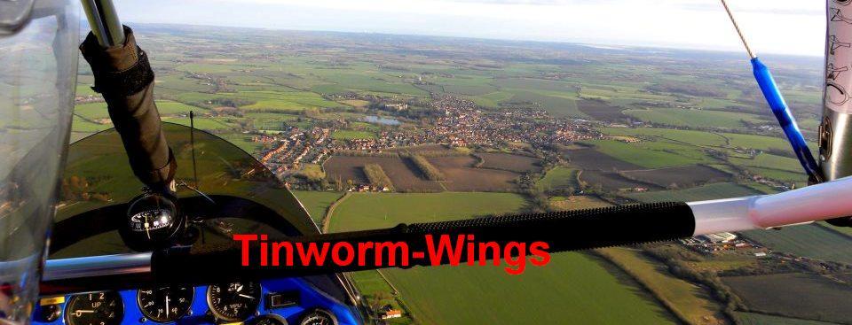 Tinworm-wings