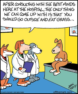 After consulting with the best minds here at the hospital, the only thing we can come up with is that you should go outside and eat grass