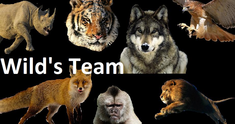 Wild's Team