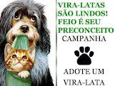 De 10 animais que nascem, 9 não conseguem um lar!!!!!! Faça a sua parte!!!!!