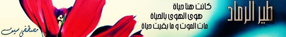 طــــير الرمــــاد