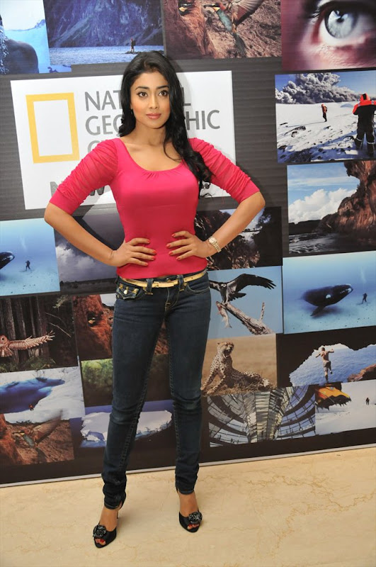 Shriya at NGTC Launch gallery pictures