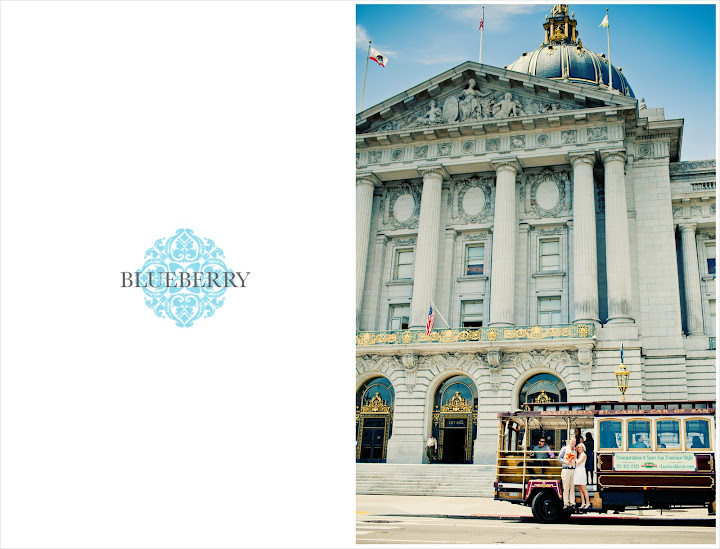 Fun gorgeous retro san francisco city hall wedding photography