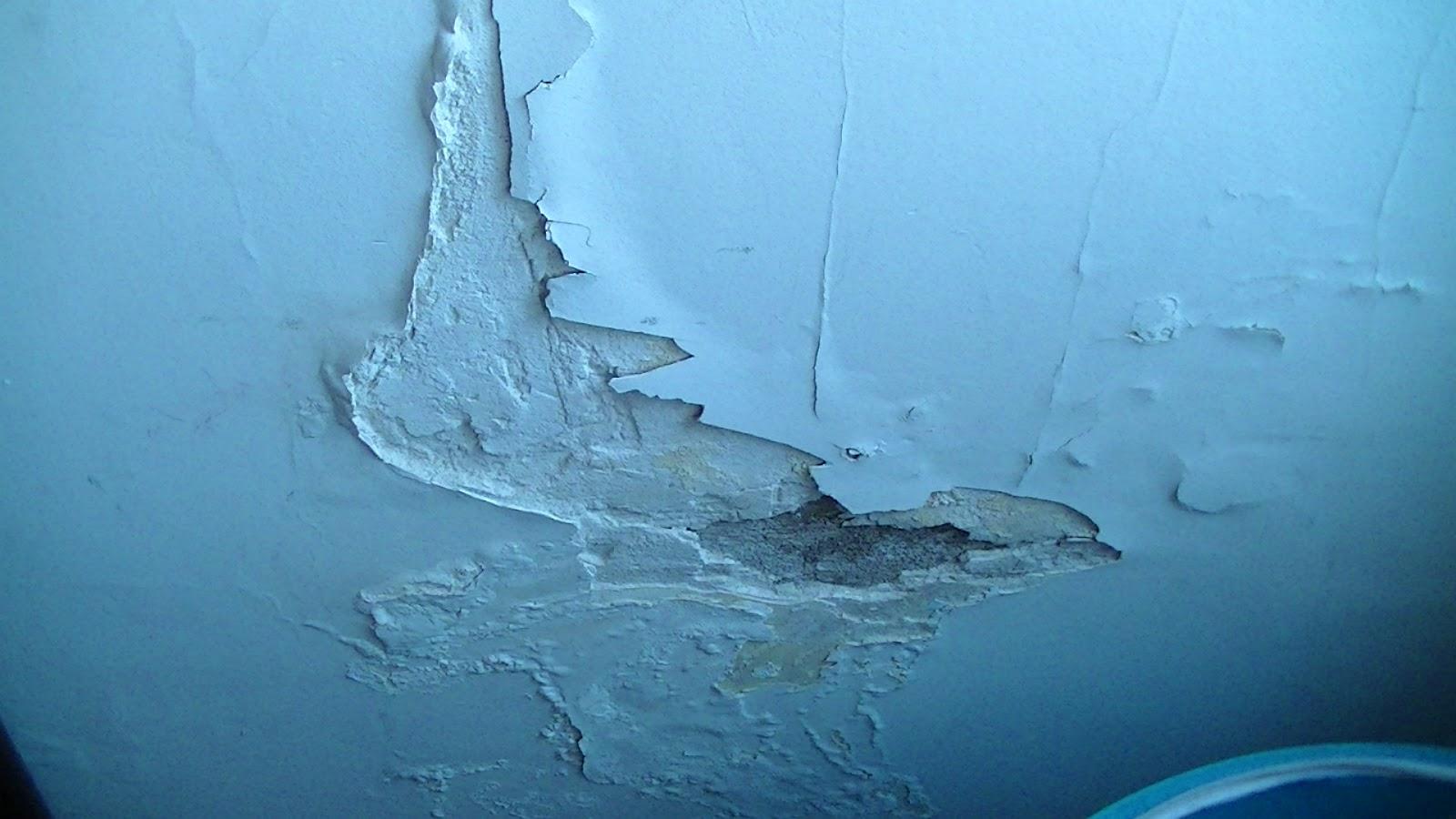 Sin picar ni romper paredes el problema de la humedad - Papel para paredes con humedad ...