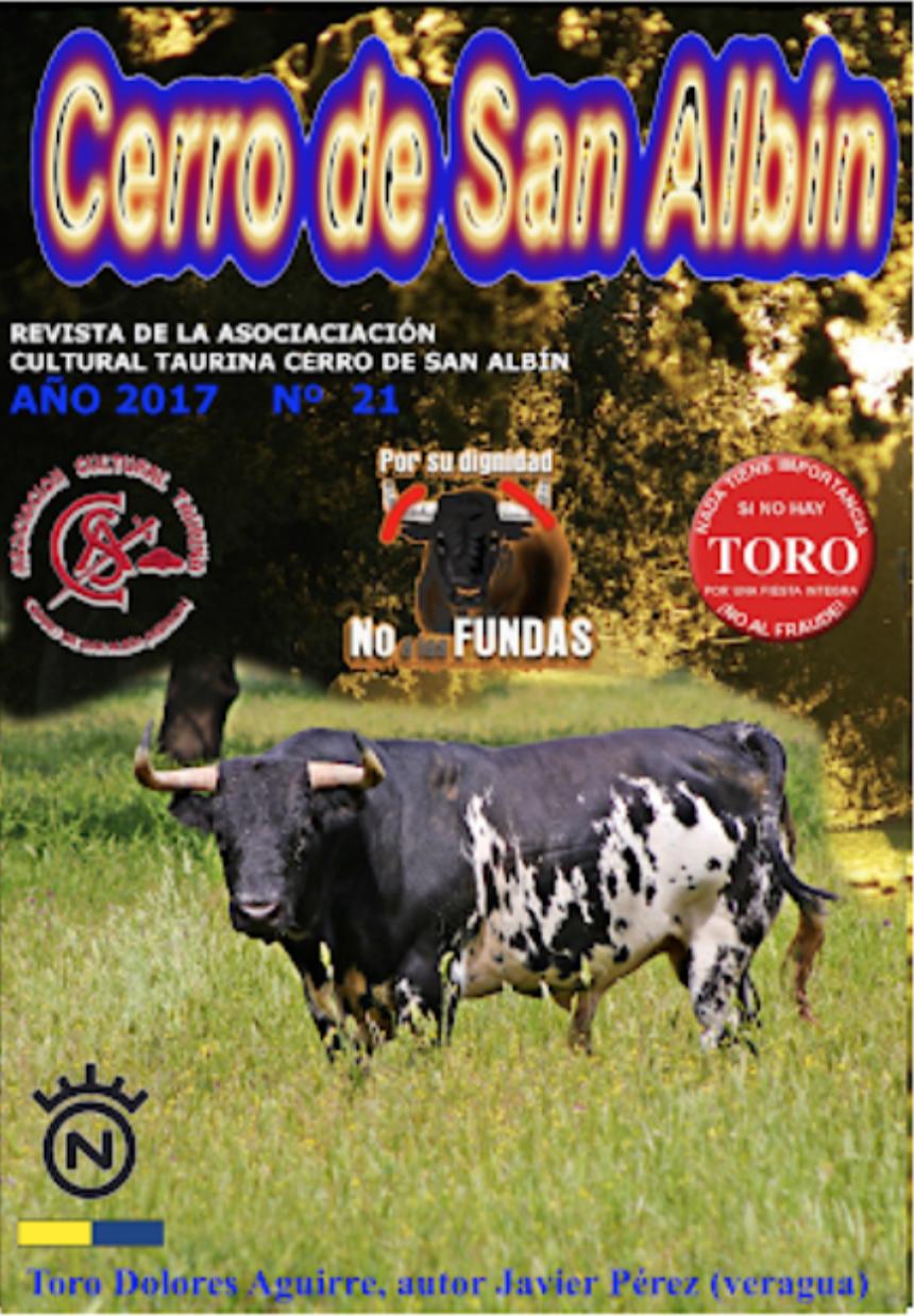Revista Cerro de San Albín Nº 21, Año 2017