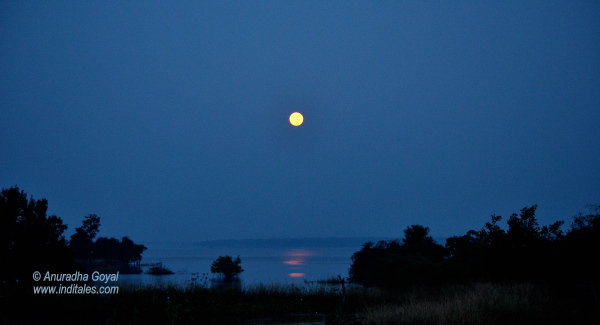 Moonlit Denwa Backwaters