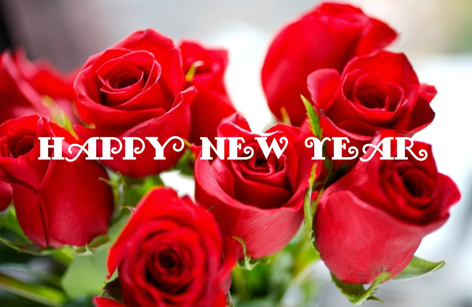 Happy new year flowers photo bouquets wallpaper