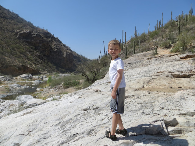 Camping In The Backyard Highlights :  Mar  Tanque Verde Falls, TMC Festival, and Camping in the Backyard