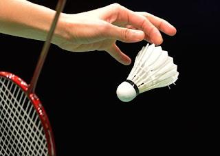 http://tutorialolahraga1.blogspot.com/2015/09/istilah-istilah-dalam-badminton.html