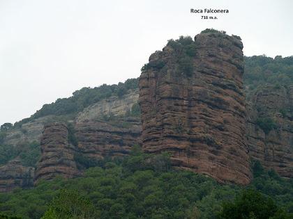 La Roca Falconera des del Mas La Font