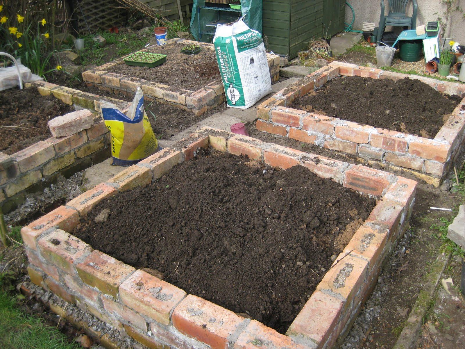 Garden Bed Bricks : Mal s allotment brick raised beds update