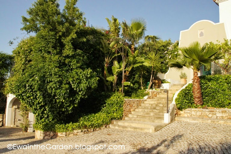ewa in the garden: 32 pics of mediterranean garden in algarve, Gartenarbeit ideen